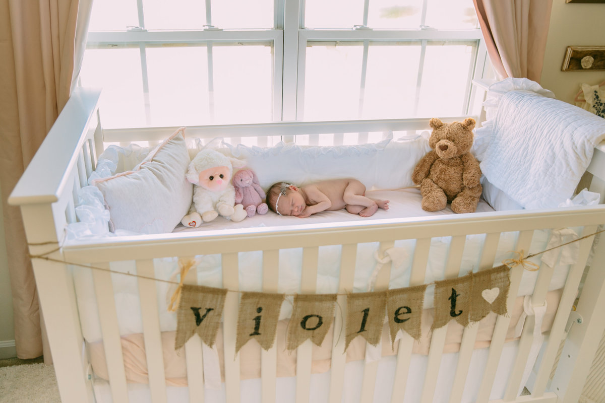 raleigh newborn photographer violet88539