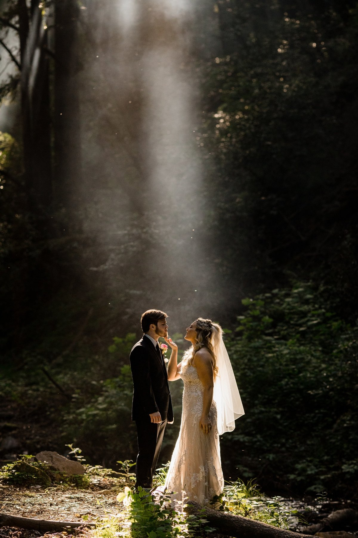 California Forest Wedding Photographer Saratoga Springs_0484