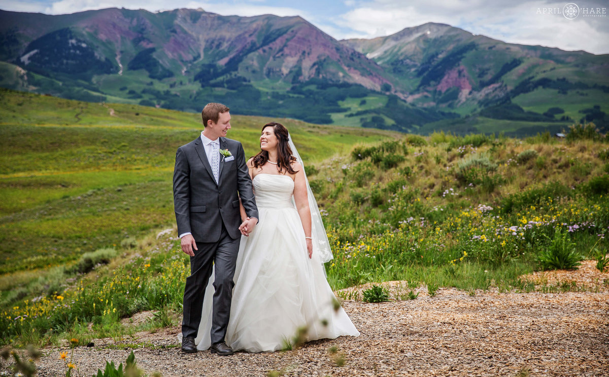 Pretty Purple Mountain Wedding Backdrop in Crested Butte