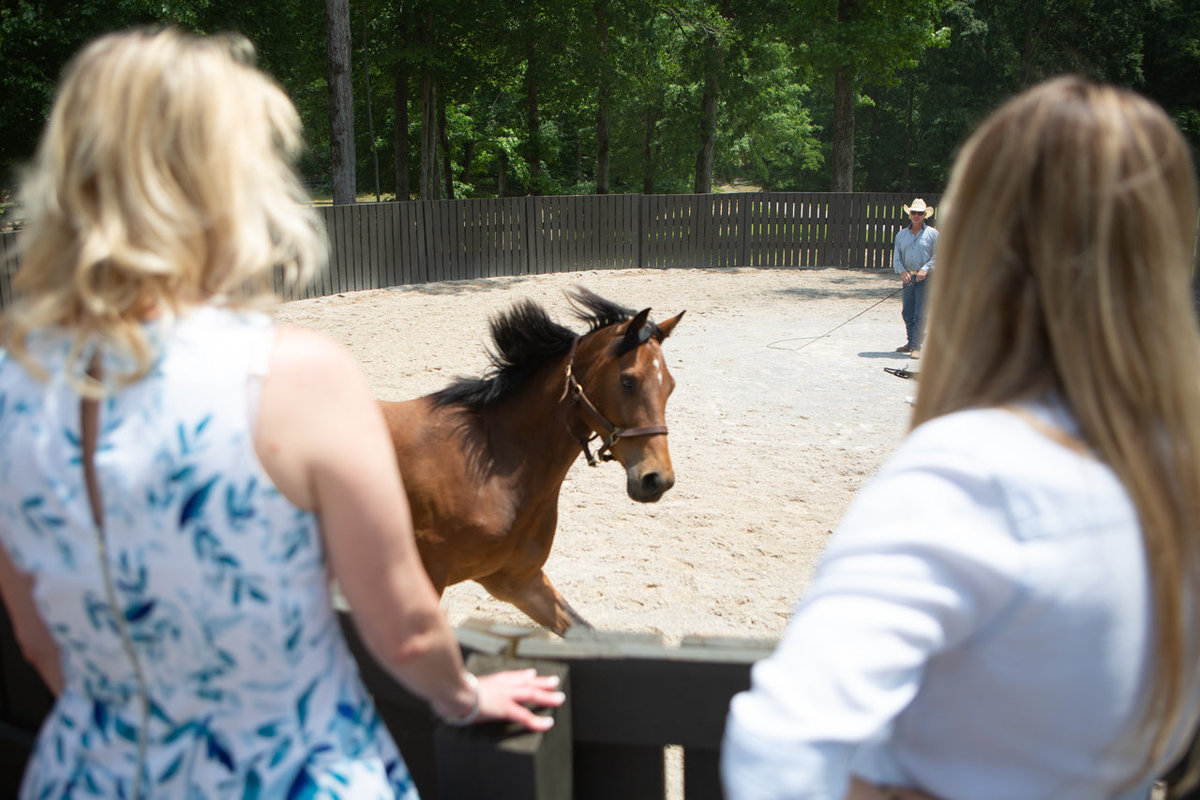 Windwood_Equestrian_Corporate_Events_Alabama_Equine_team_Building_24