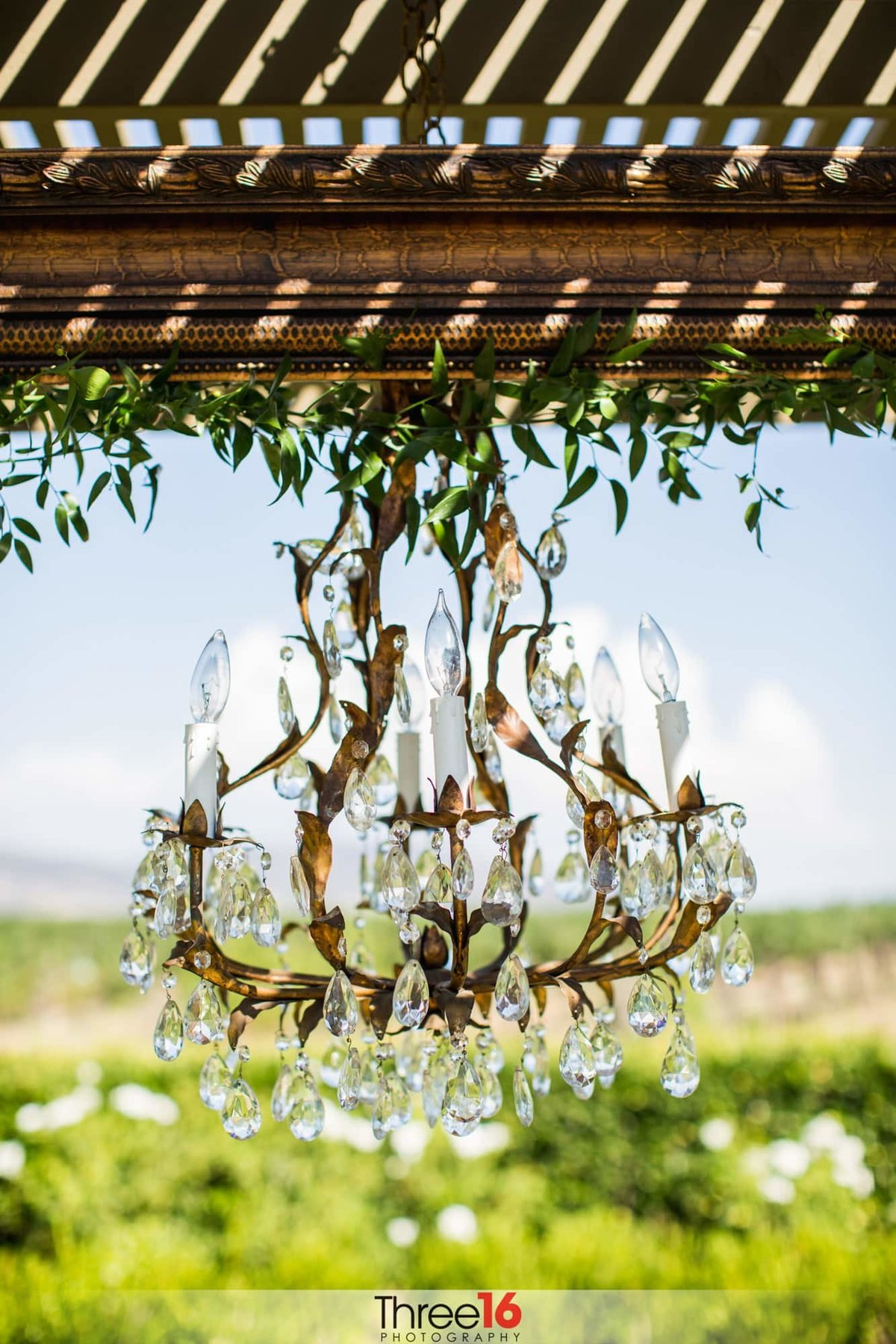 Ponte Winery chandelier