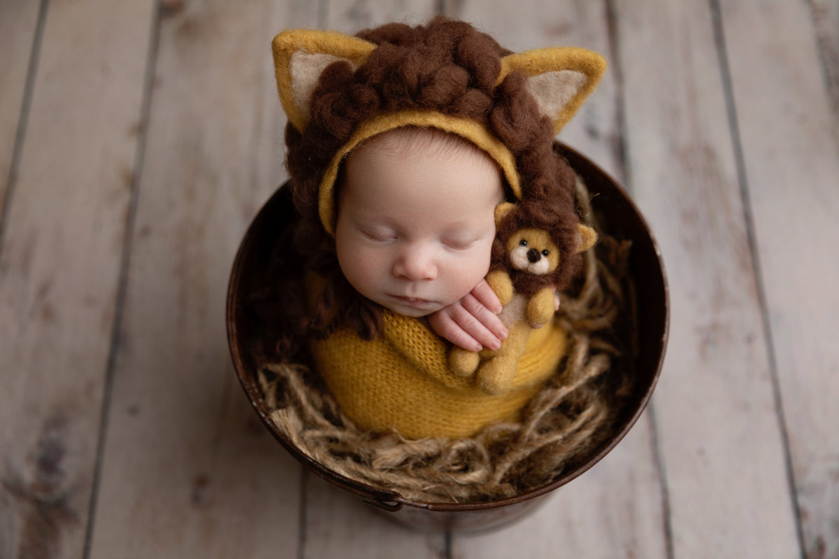 Baby with lion bonnet & stuffy