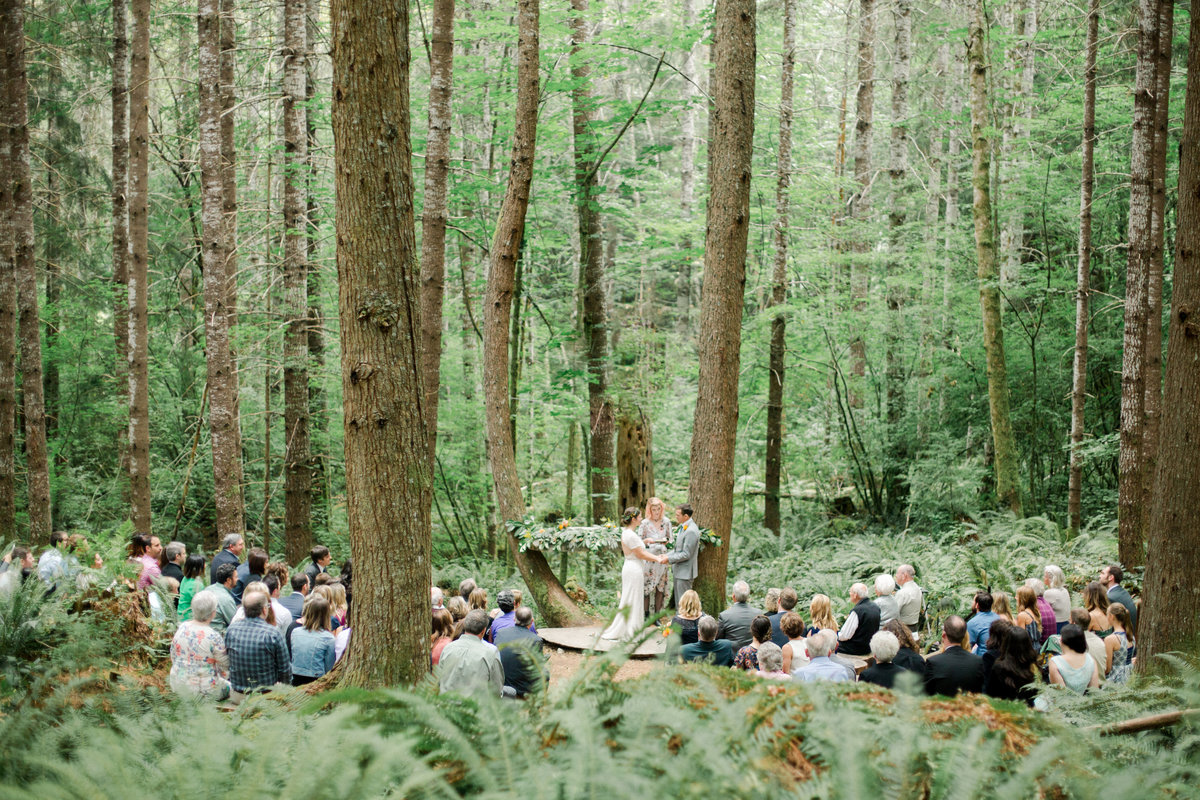 wedding ceremony in the deep woods at base of mount rainier