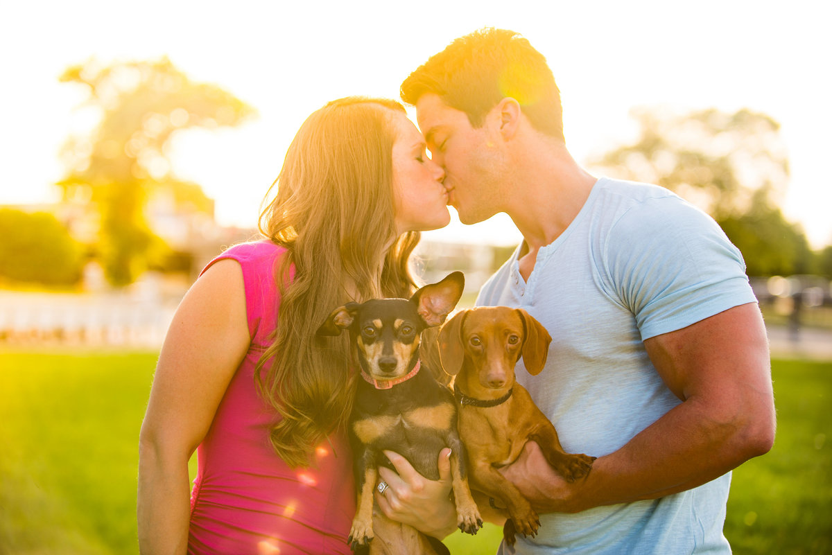 dachshunds engagement kiss