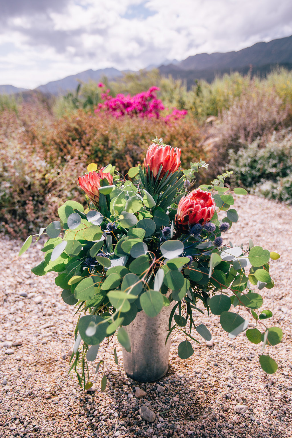 desert inspired pink protea floral arrangement at wedding in Ojai