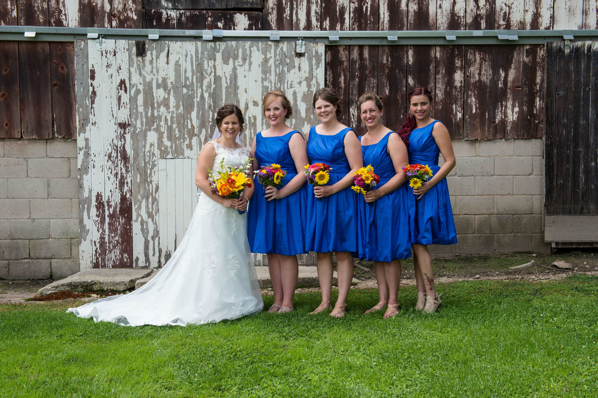 traditional posed bridal party