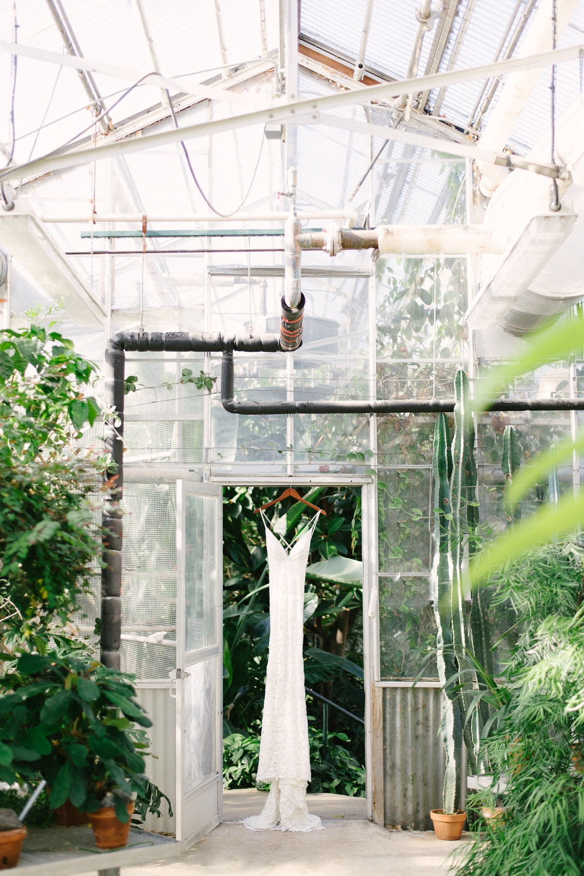 Mann Leiser Memorial Greenhouse wedding