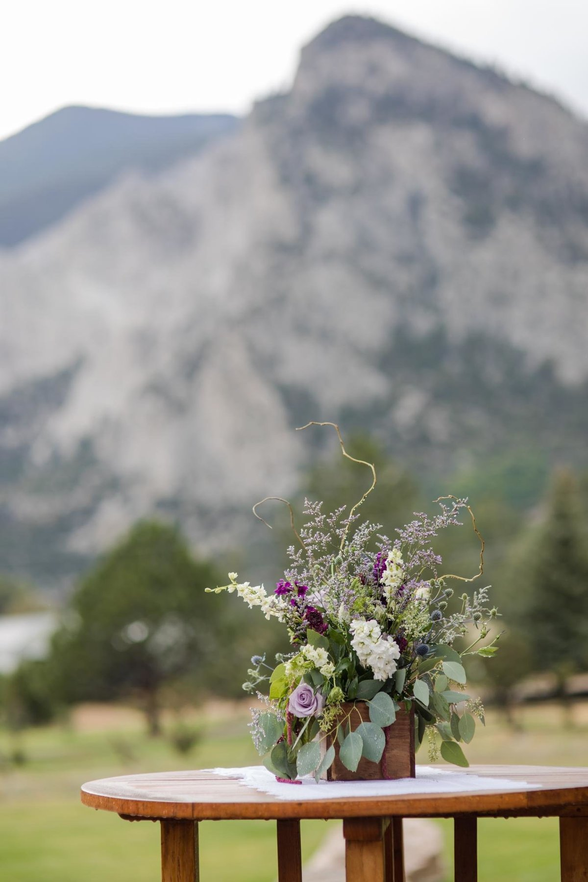 Bachman Mt Princeton Mountain Wedding-1256