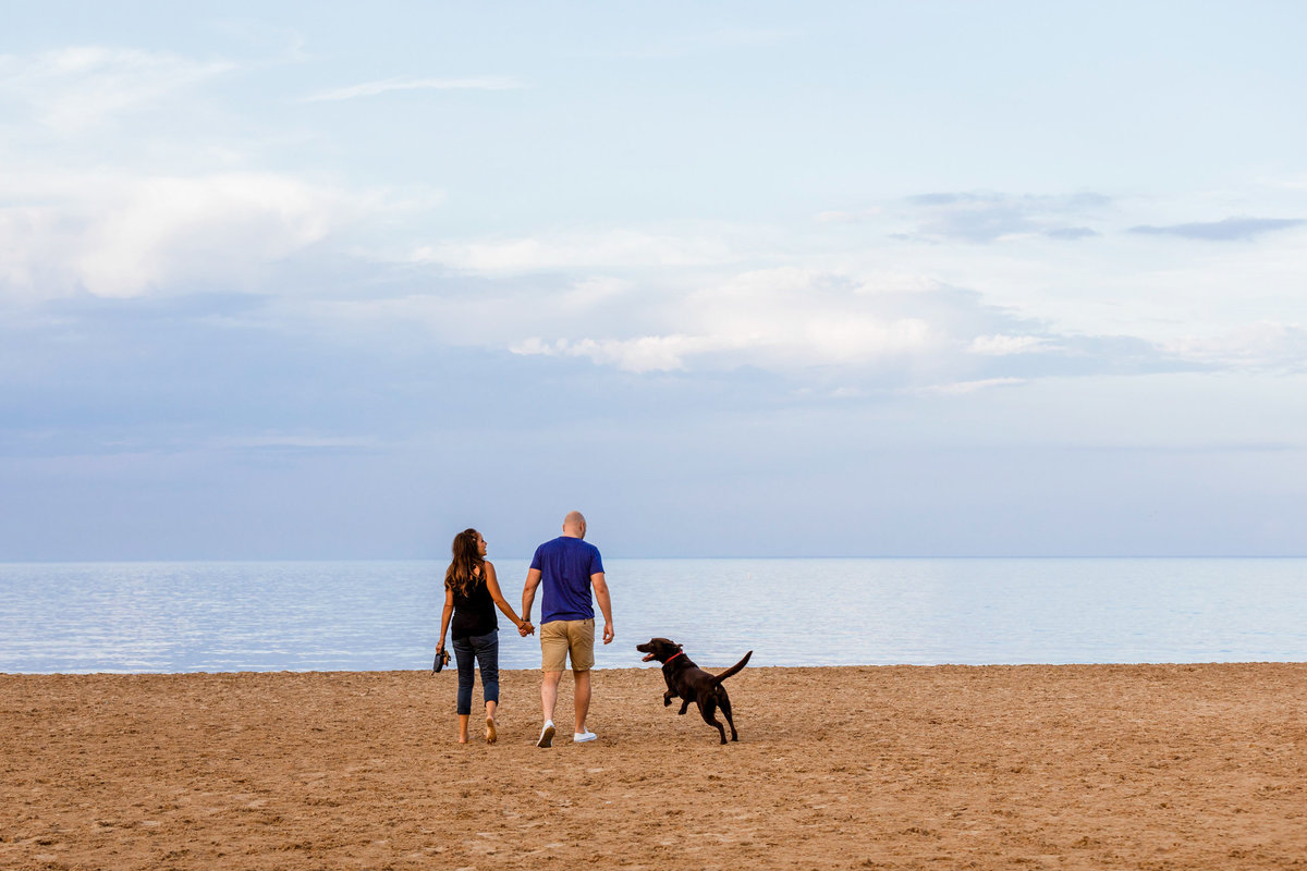 Montrose-Dog-Beach-Engagement-Photos