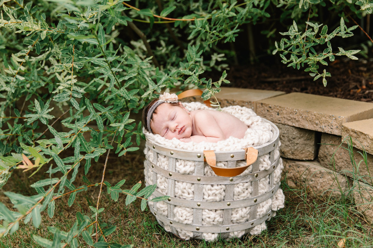 raleigh newborn photographer-lena-9048