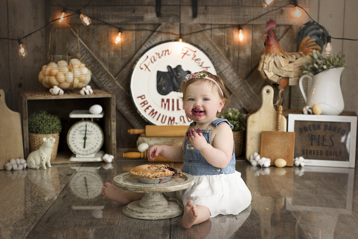 columbus ohio photographer cake smash first birthday vintage farm rustic country