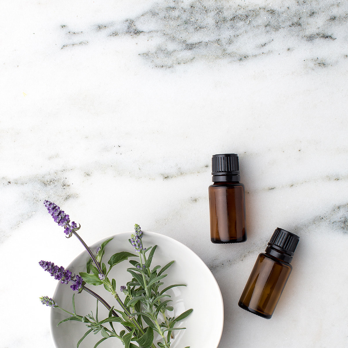 Sprig of lavender in a white dish and two bottles of doTERRA essential oils on marble countertop