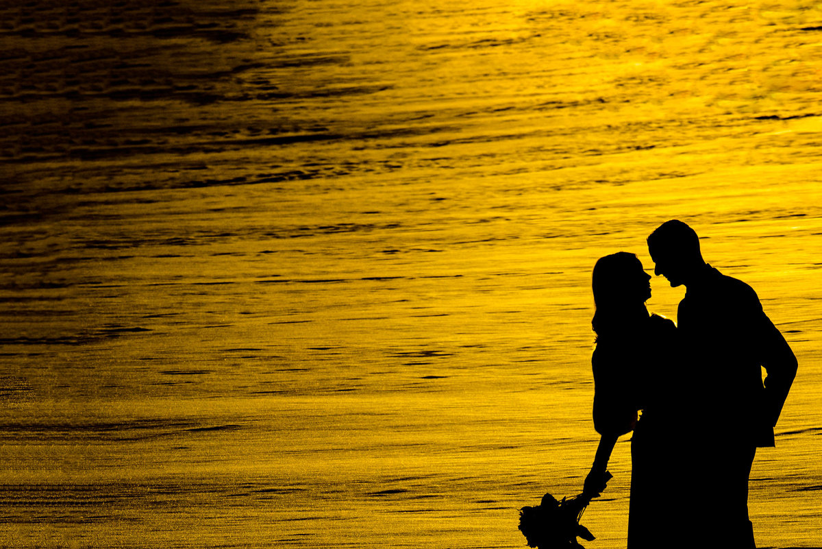 bride and groom silhouette in Mill Woods Park