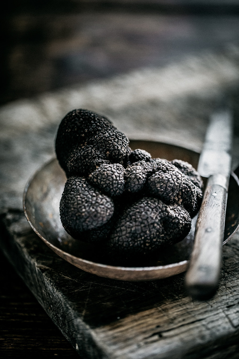 The Truffle Farm - Anisa Sabet - The Macadames - Food Travel Lifestyle Photographer-82