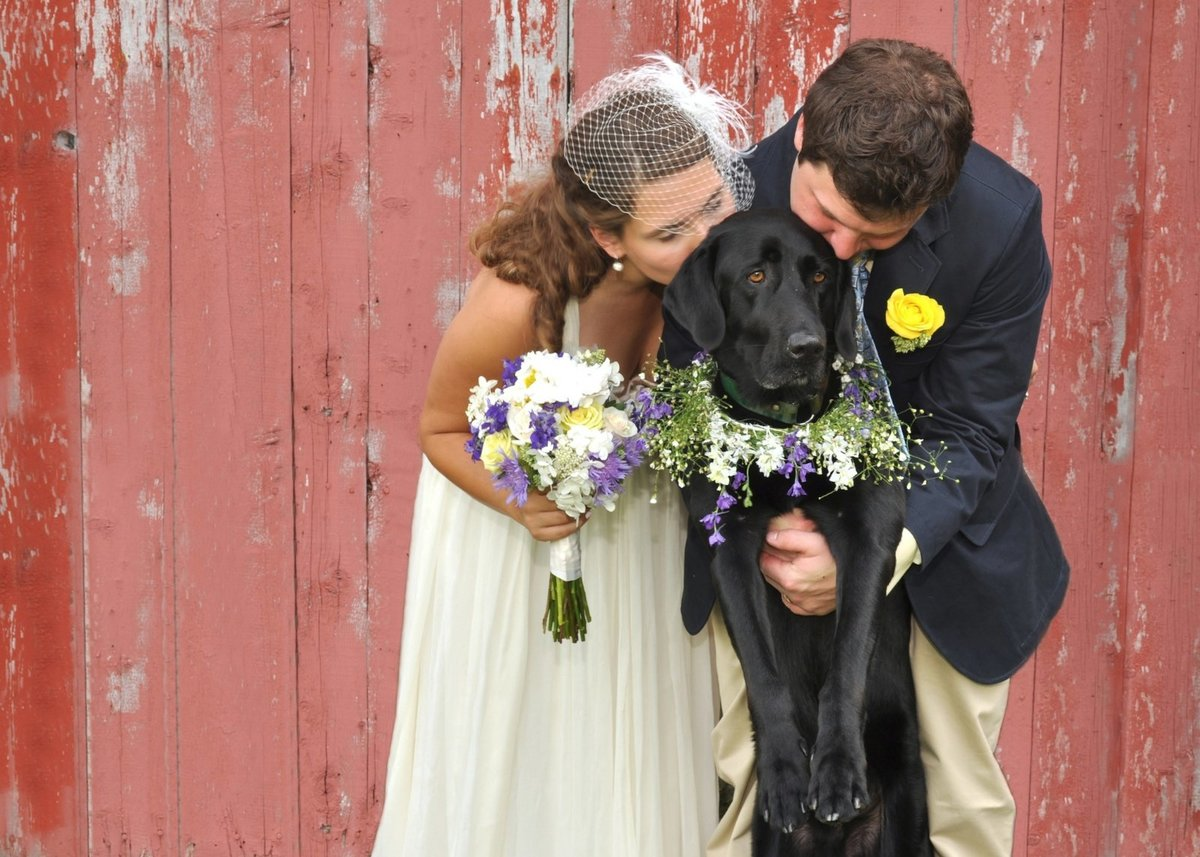 dog friendly Vermont wedding photographer