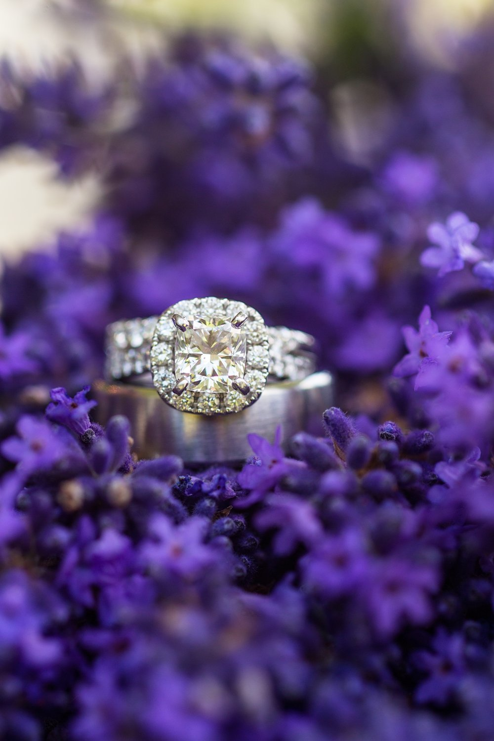 Woodinville-Lavender-wedding-DBK-Photography-003
