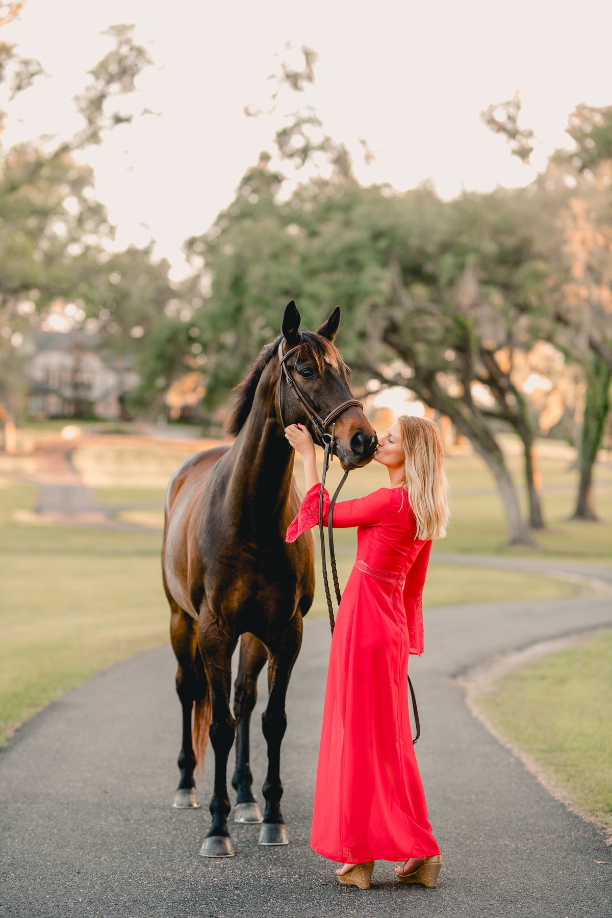 Ocala horse professional photographer specializing in horse and rider pictures.