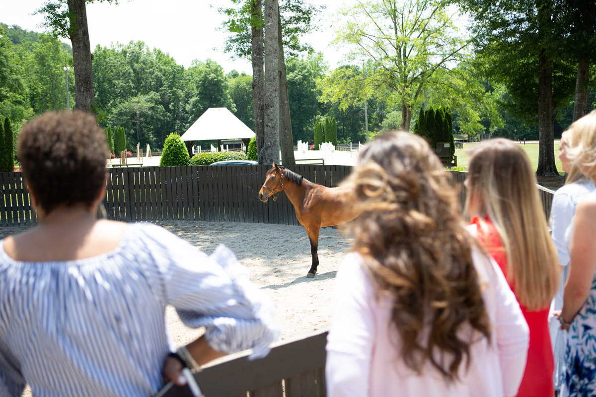 Windwood_Equestrian_Corporate_Events_Alabama_Equine_team_Building_21
