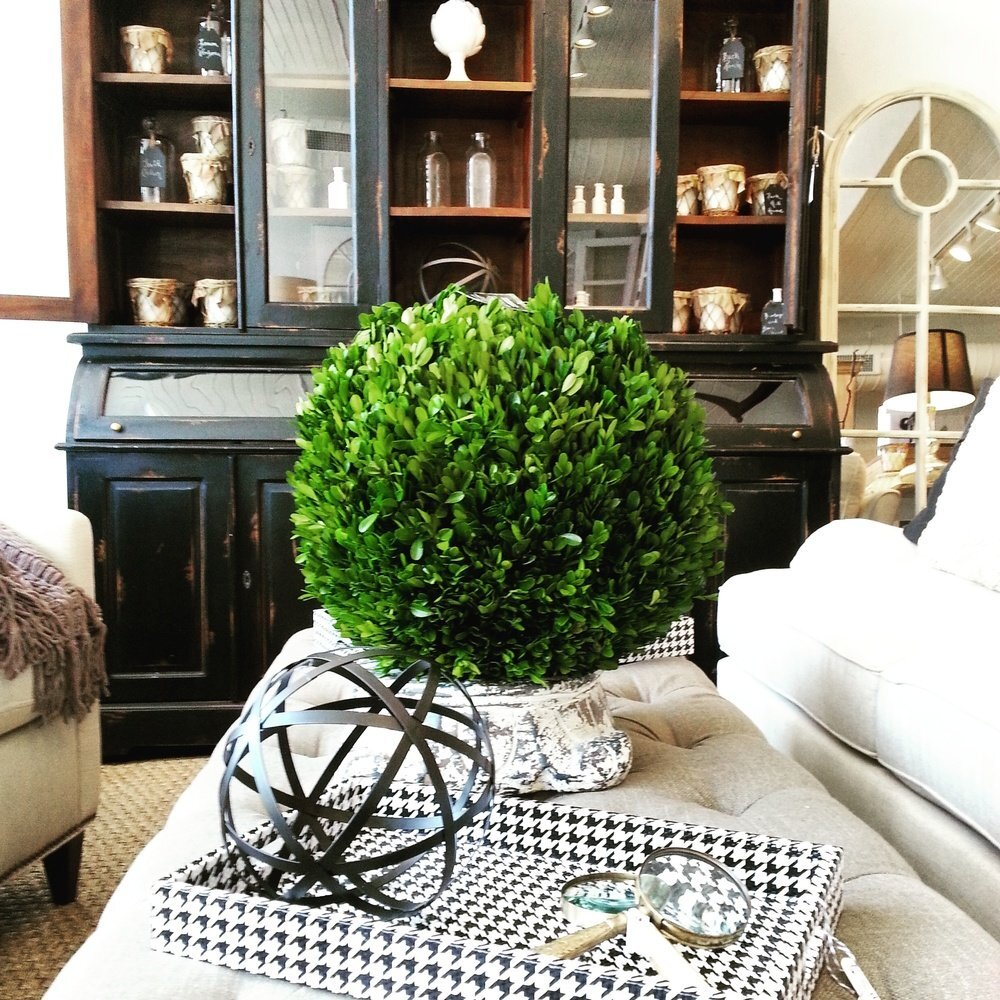 green boxwood ball