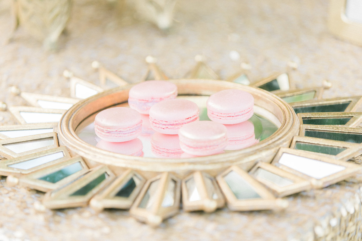 Blush Pink Macarons Food Photography