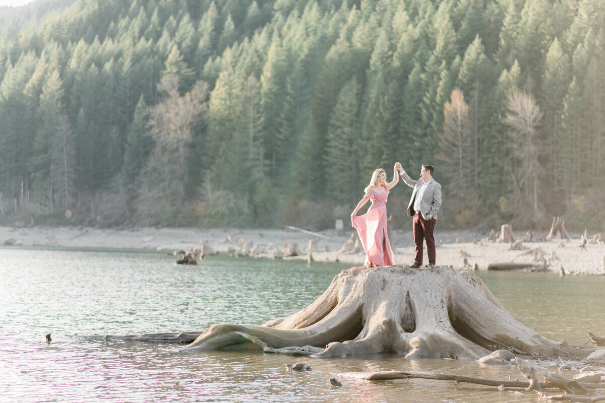Janet Lin Photography Wedding Engagement Portrait Photographer Pacific Northwest Seattle Yelm Tacoma Washington Portland Oregon Light Airy Fine Art8