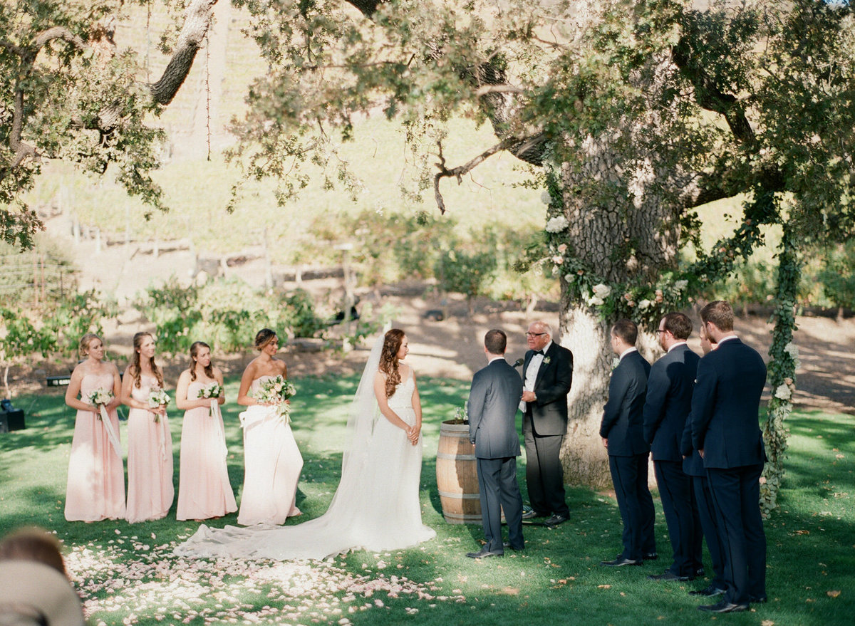 Triunfo Creek Vineyard Wedding-000084680015