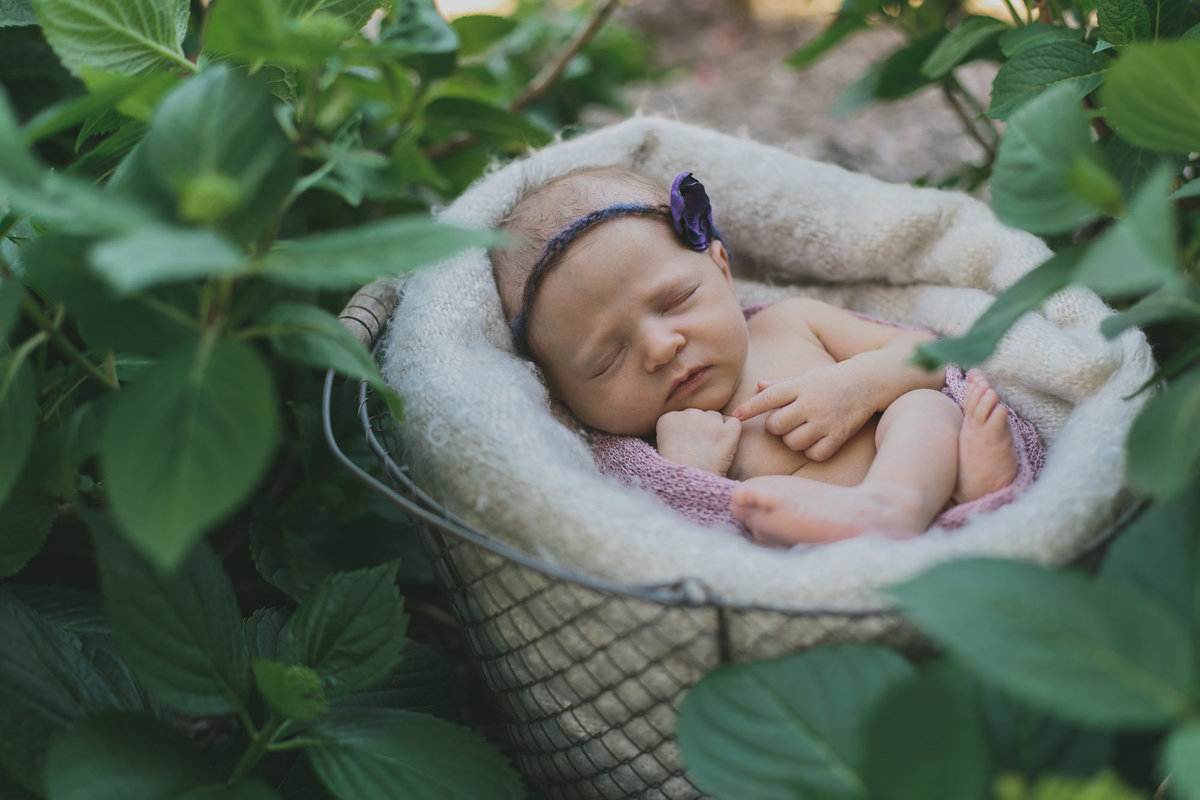 raleigh-Newborn-photographer-olivia61024