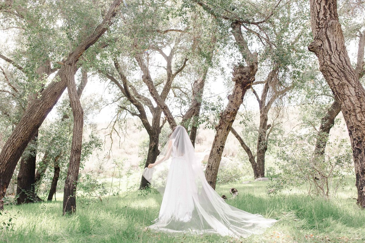 Babsie-Ly-Photography-Fine-Art-Film-Wedding-Bridal-Editorial-in-Hidden-Oaks-San-Diego-067