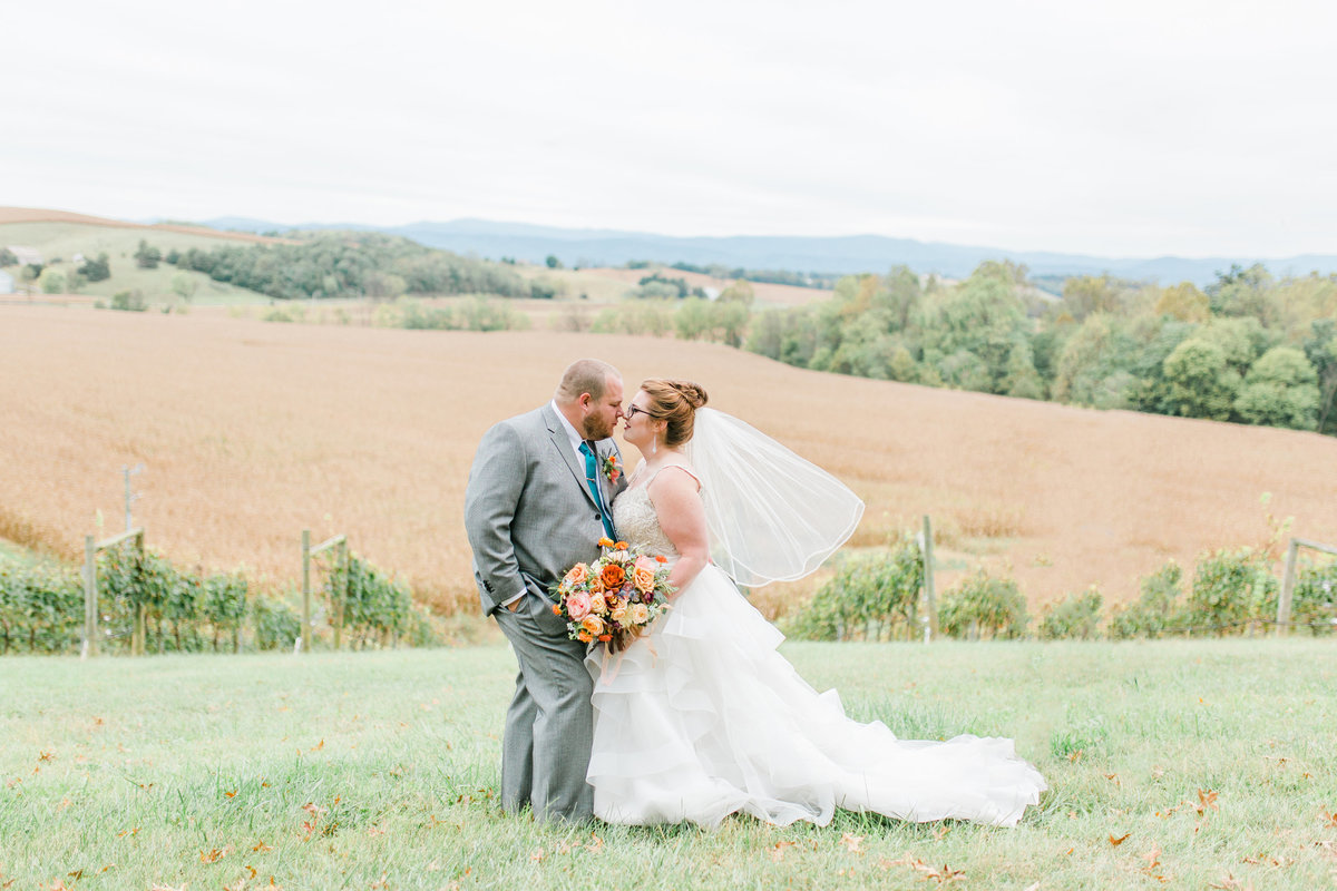 Bluestone_Vineyard_Fall_Wedding_Virginia_DC_Photographer_Angelika_Johns_Photography-9807