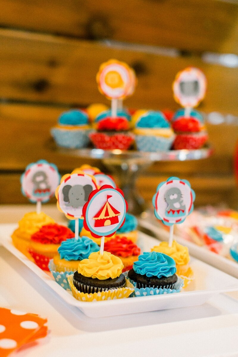 Circus Themed 1st Birthday Indianapolis Party Planner_0069