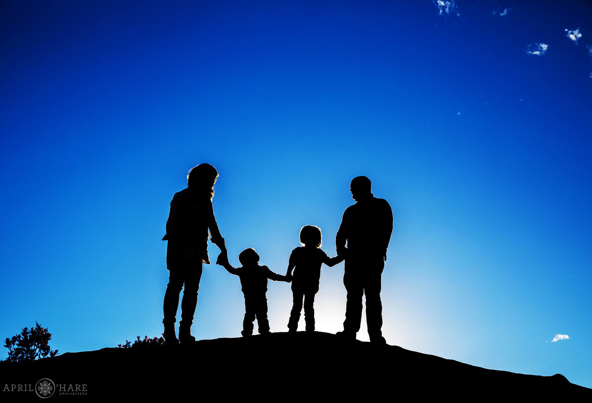 Silhouette Family Photography  in Denver Colorado