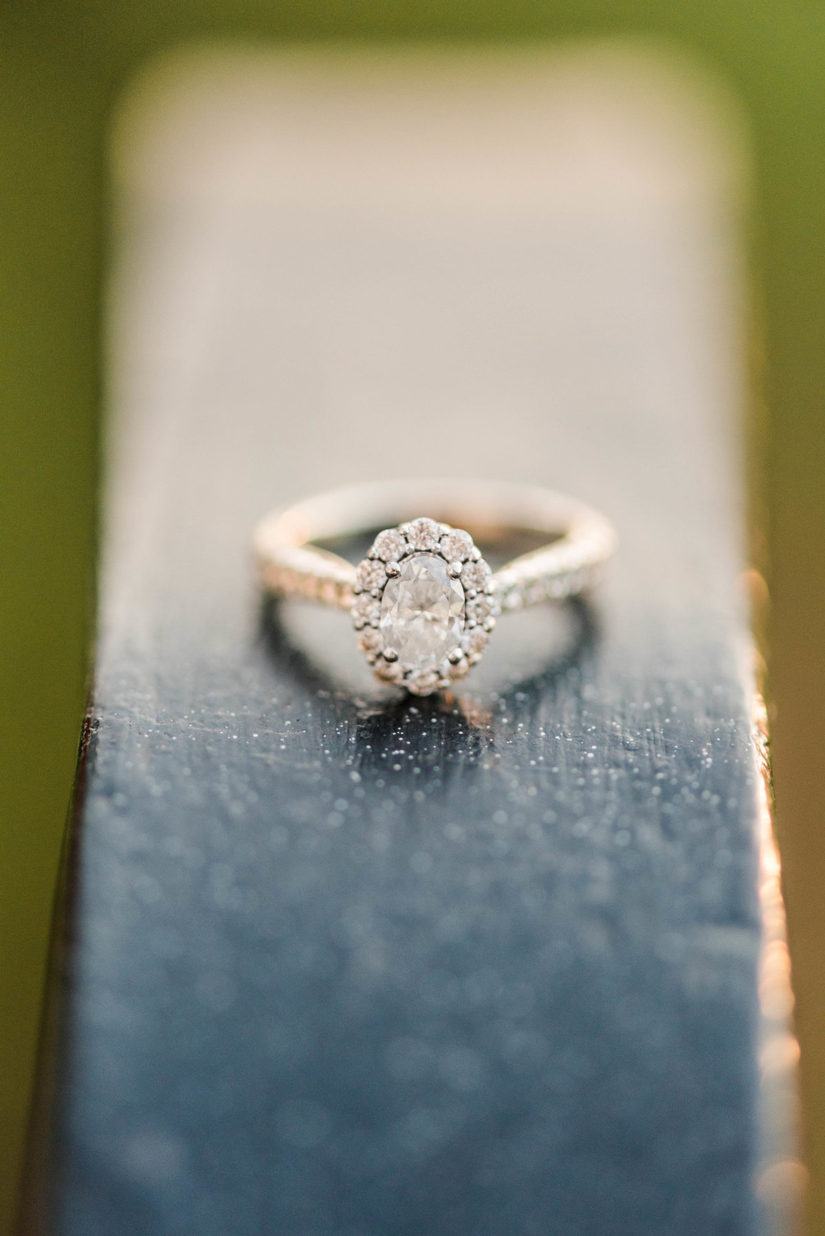 Summer_Andy_Engaged-4739