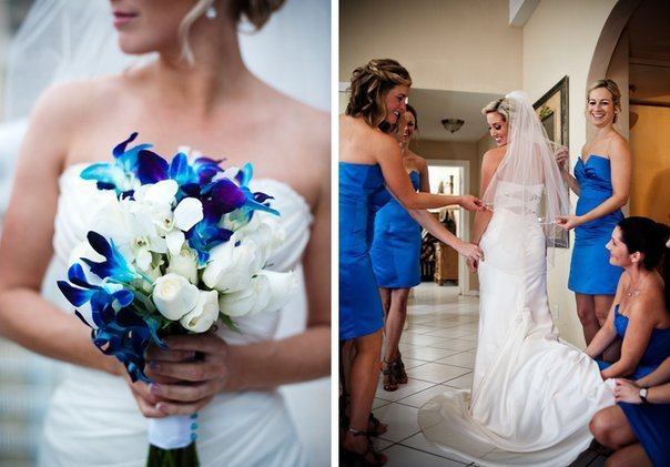 blue dendrobium orchids wedding