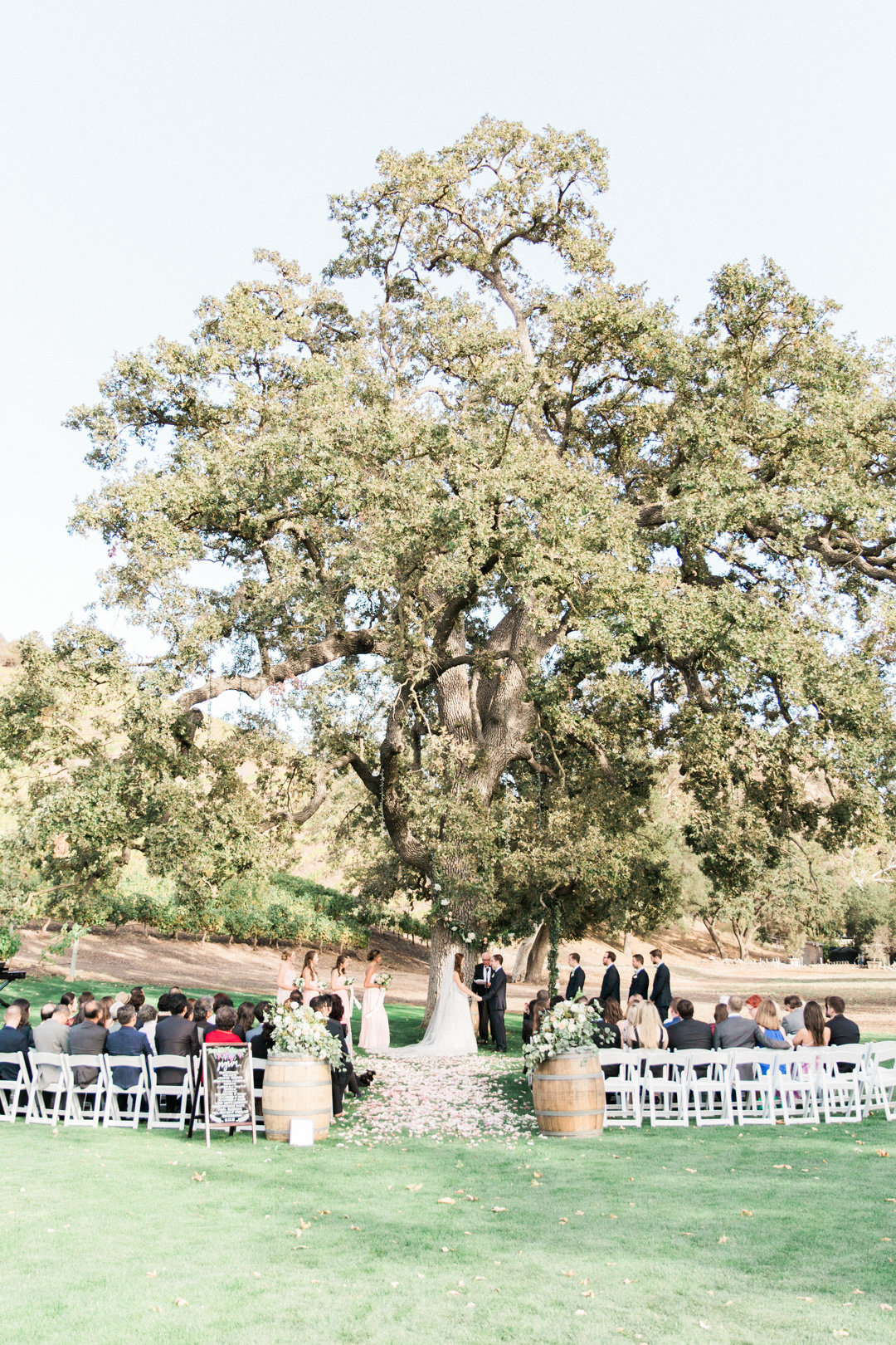 Triunfo Creek Vineyard Wedding-6773