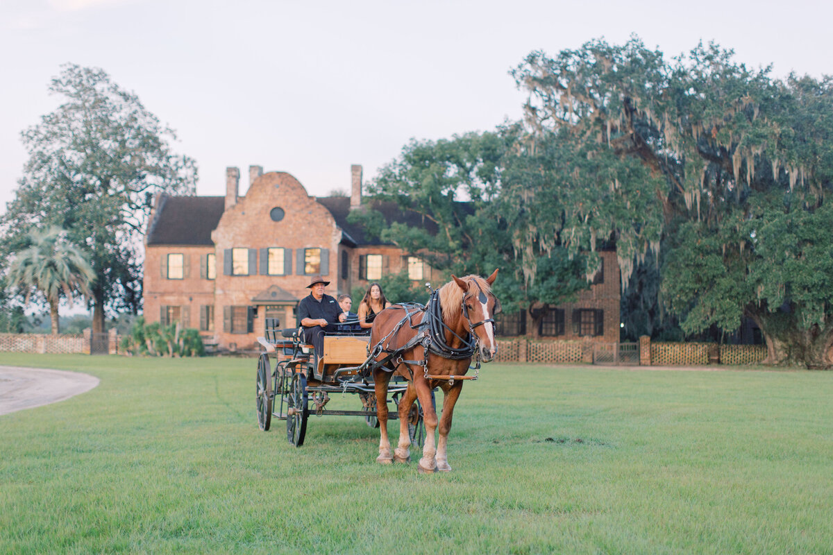 Melton_Wedding__Middleton_Place_Plantation_Charleston_South_Carolina_Jacksonville_Florida_Devon_Donnahoo_Photography__0848