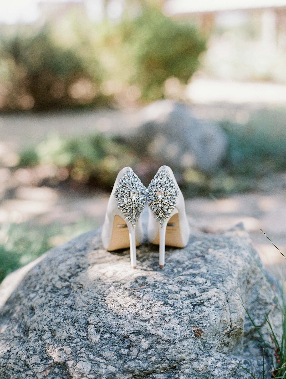 Dani Toscano Photography — Maravilla Gardens Wedding-2