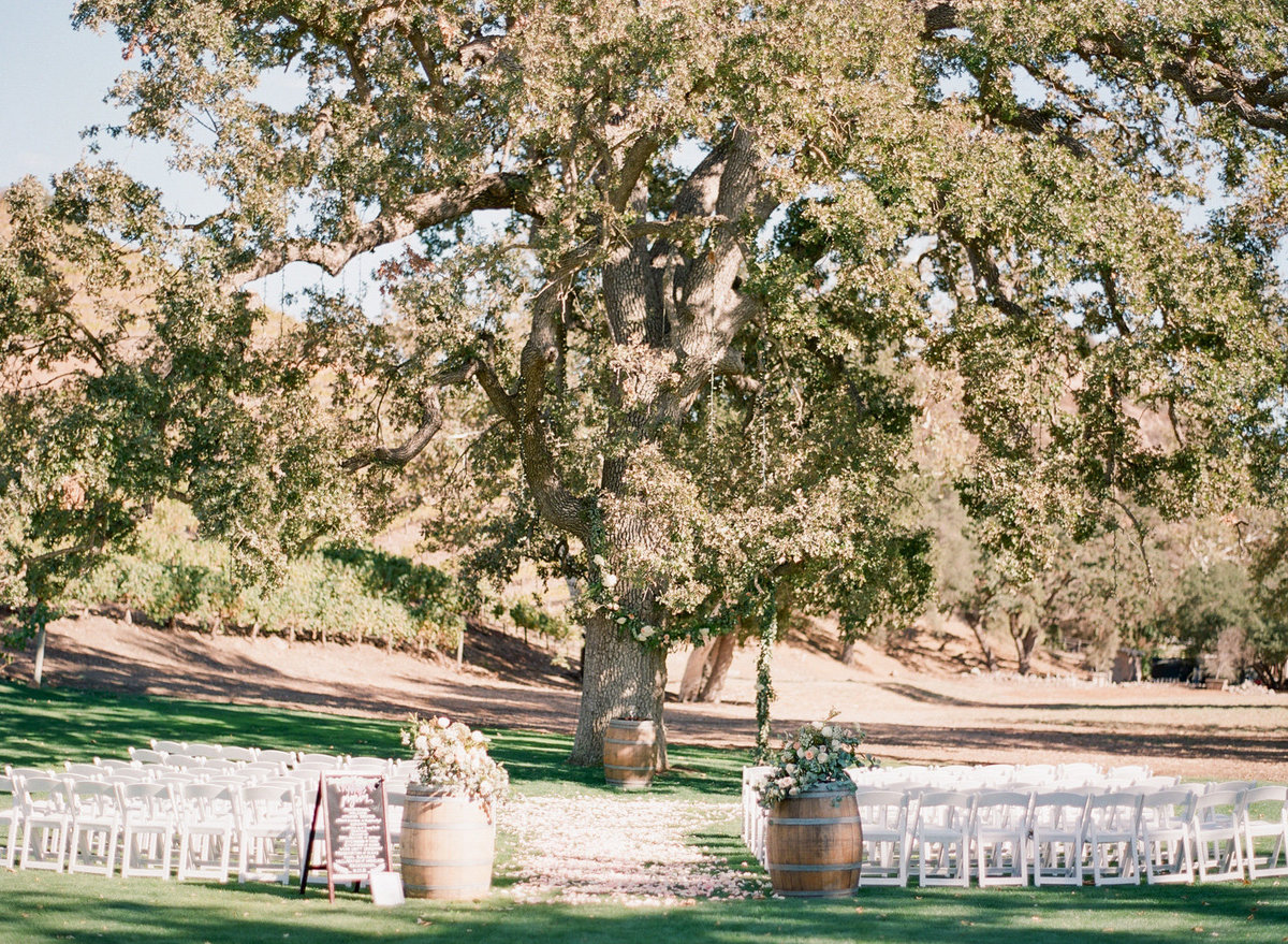 Triunfo Creek Vineyard Wedding-000084660013