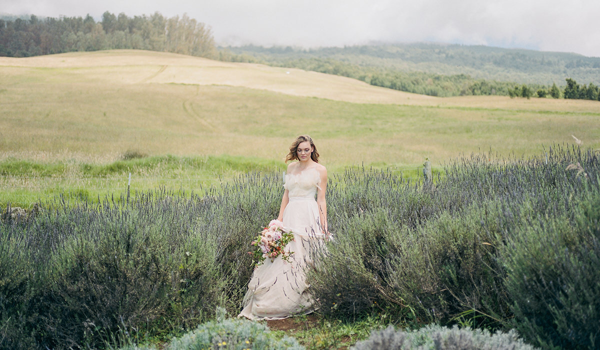 Alii-Kula-Lavender_Maui-Wedding-Photographer_Caitlin-Cathey-Photo_crop