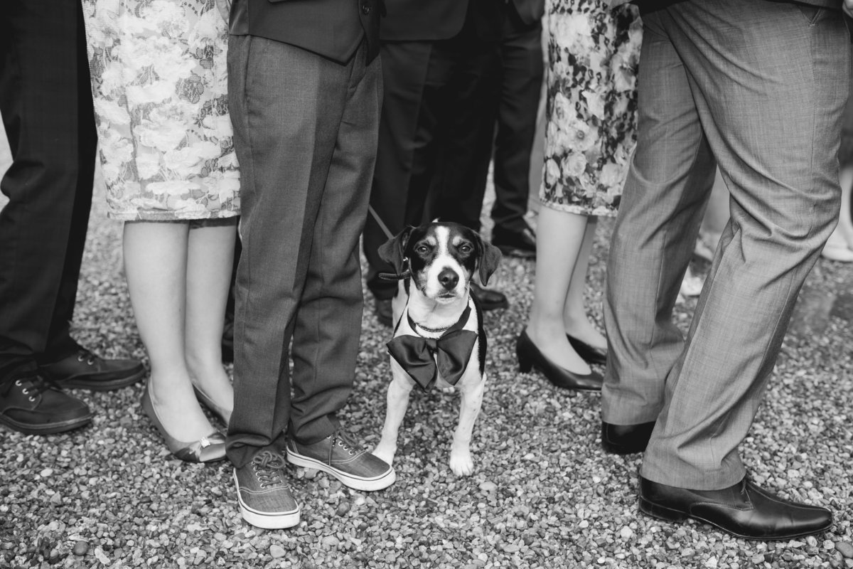 huntsham-court-wedding-photographer-devon-49