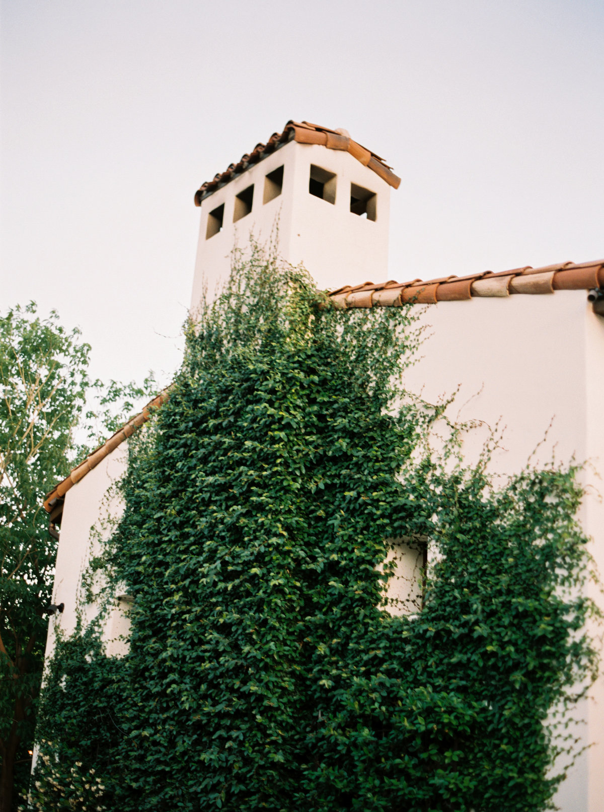 Phoenix, Arizona Wedding - Mary Claire Photography-18