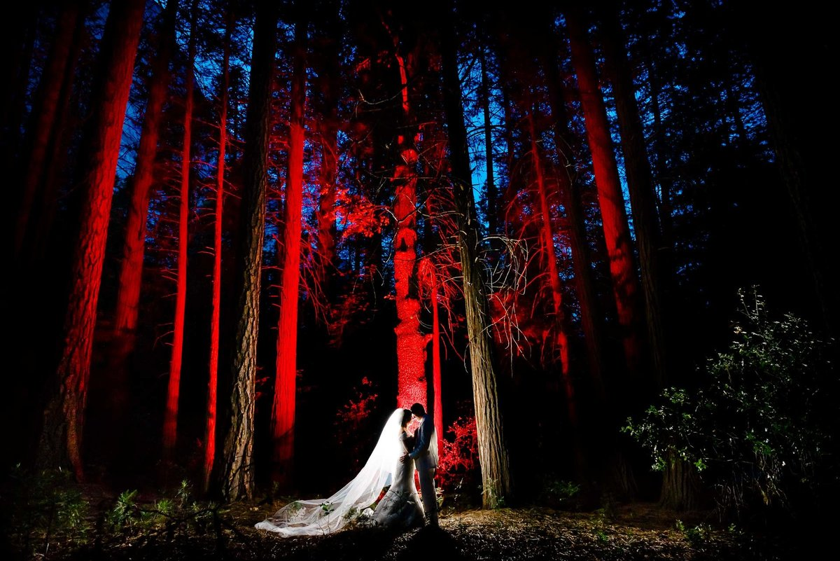wedding portrait in the woods at night  aT YOSEMITE NATIONAL PARK