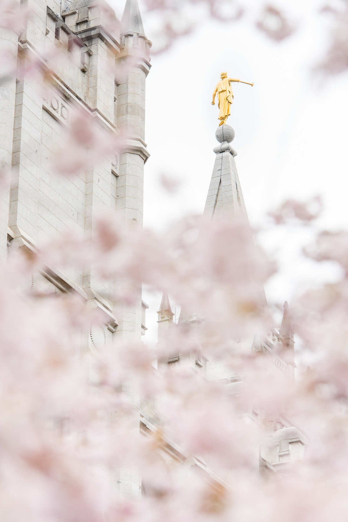 Utah Wedding Photographers - Salt Lake temple wedding RE (3 of 18)