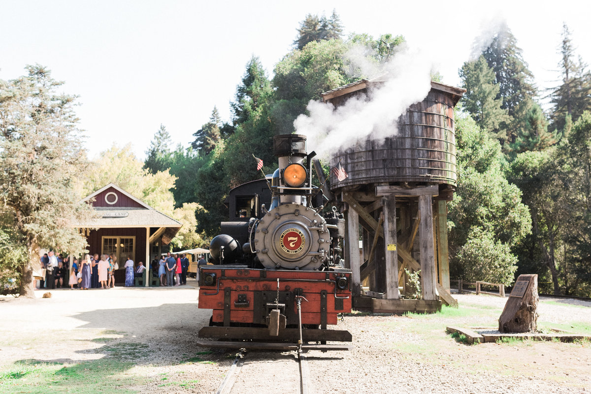 Roaring Camp Railroad Santa Cruz Wedding25