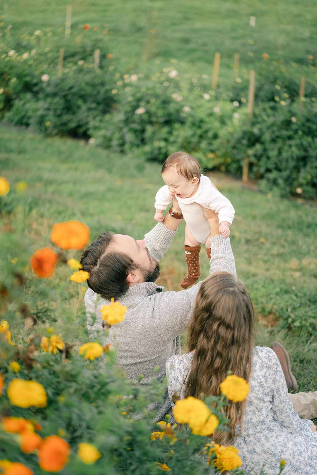 outdoor family newborn in flower field