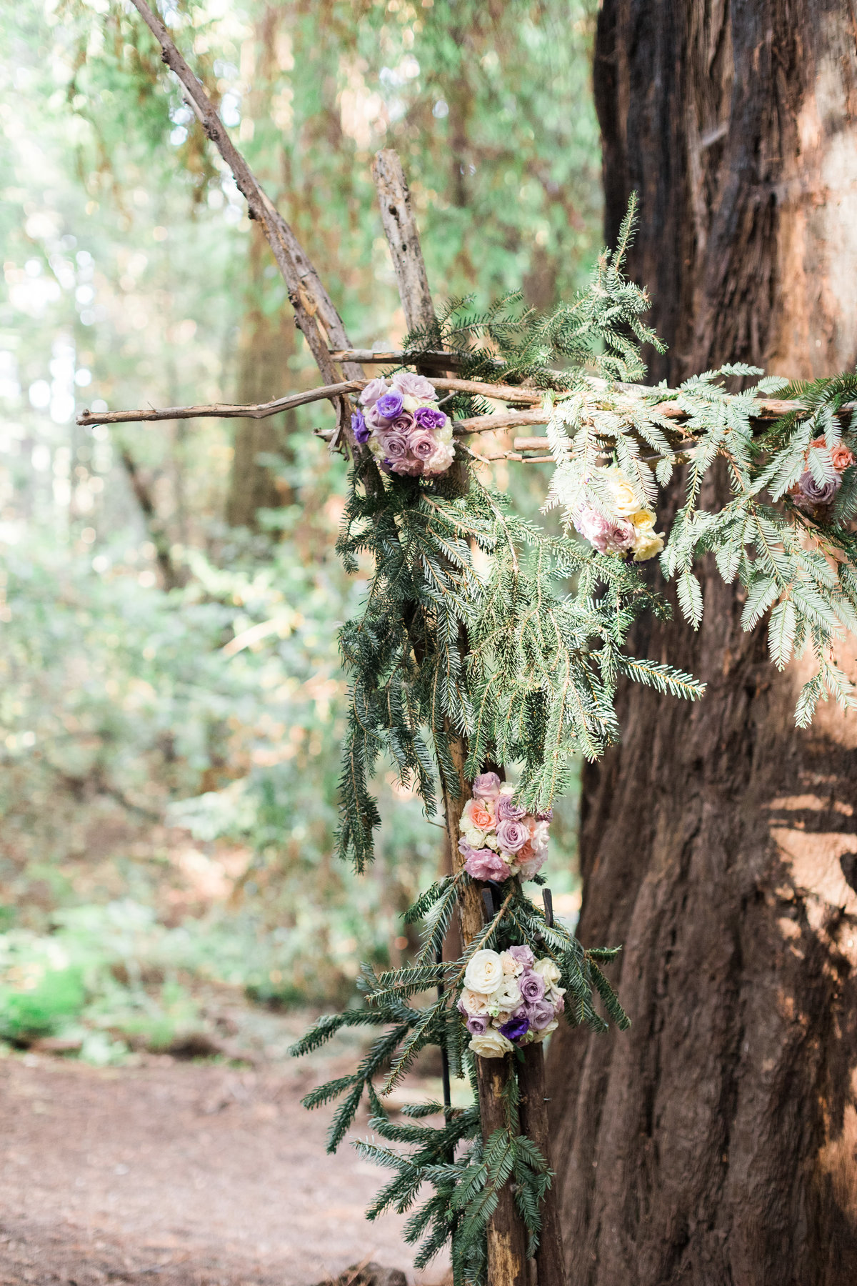 Roaring Camp Railroad Santa Cruz Wedding28