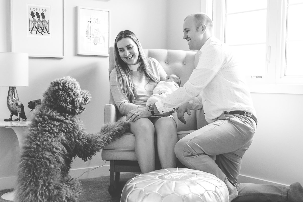new parents in nursery with baby girl and dog {Hamilton Lifestyle Photographer}