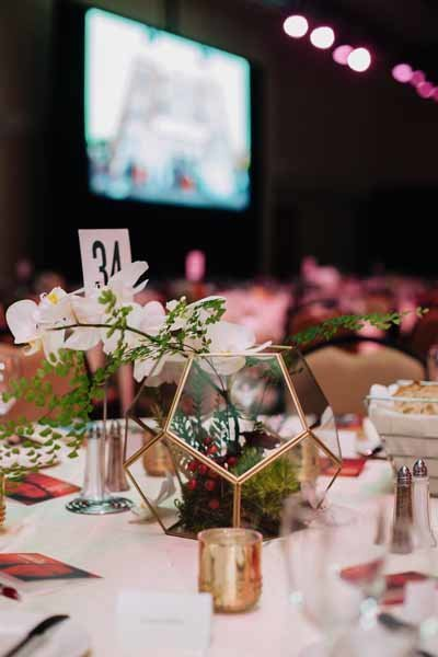 17Seattle-Gala-flora-nova-design