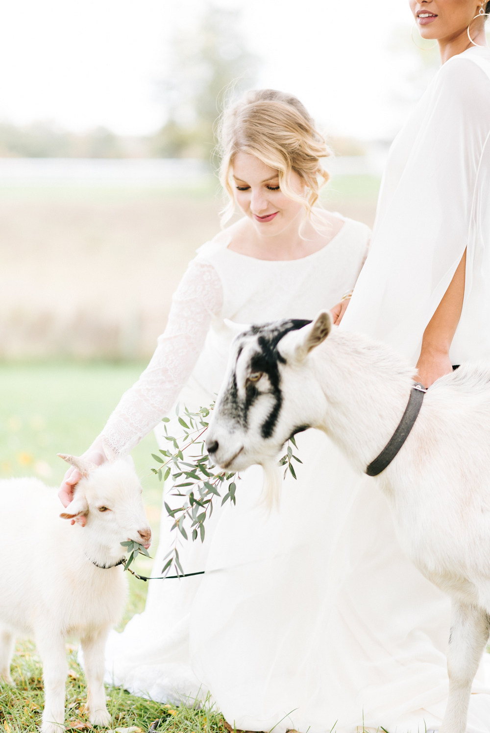 Lush Greenery Wedding Inspired Styled Shoot at Cornman Farms Bride with Goat
