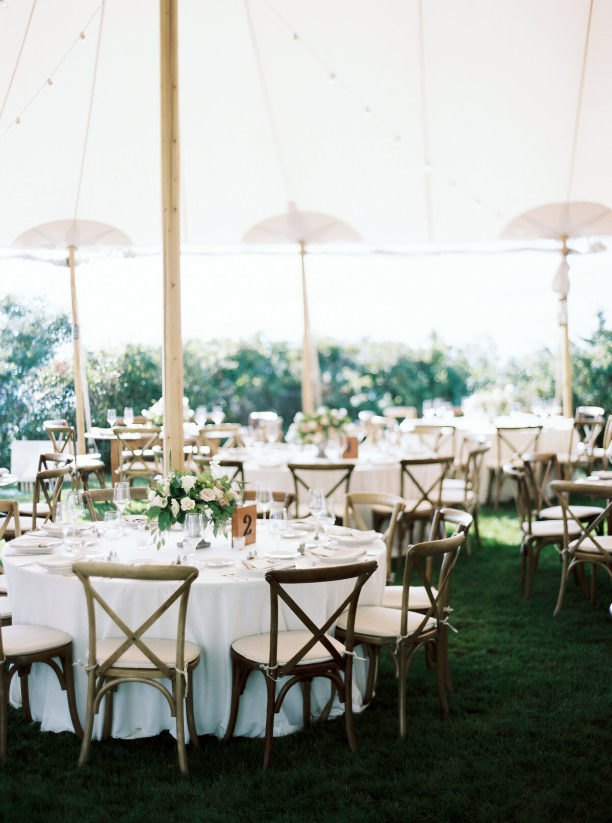 Wings Neck Tented Wedding257