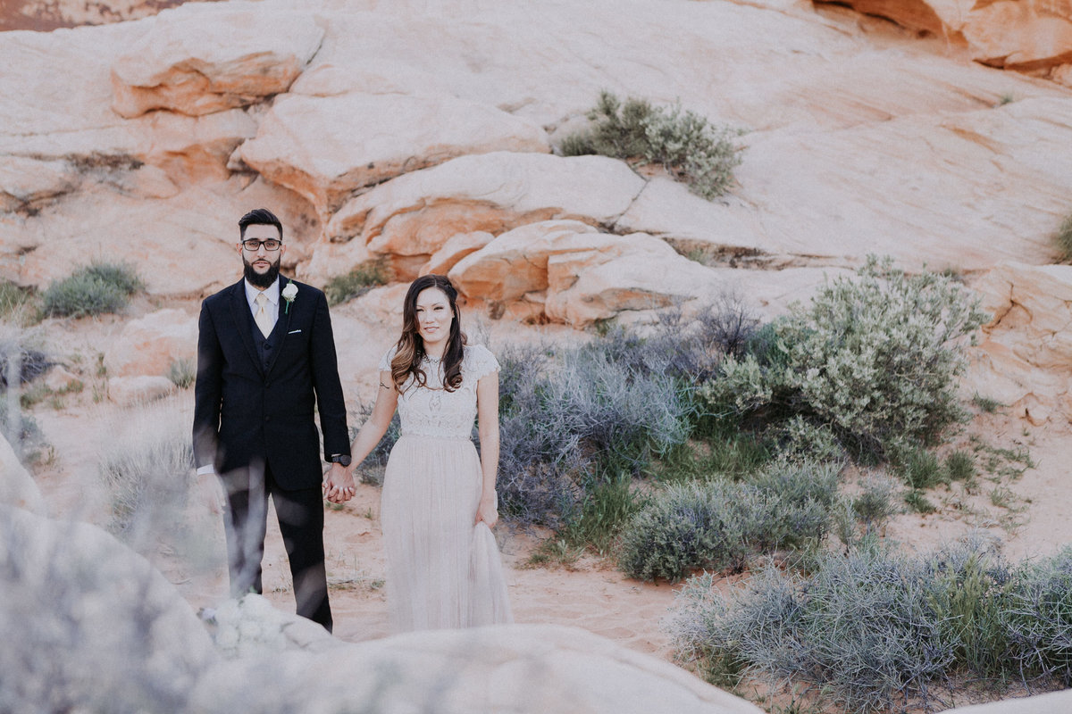 Lake Tahoe elopement photographers couple pose near desert vegetation
